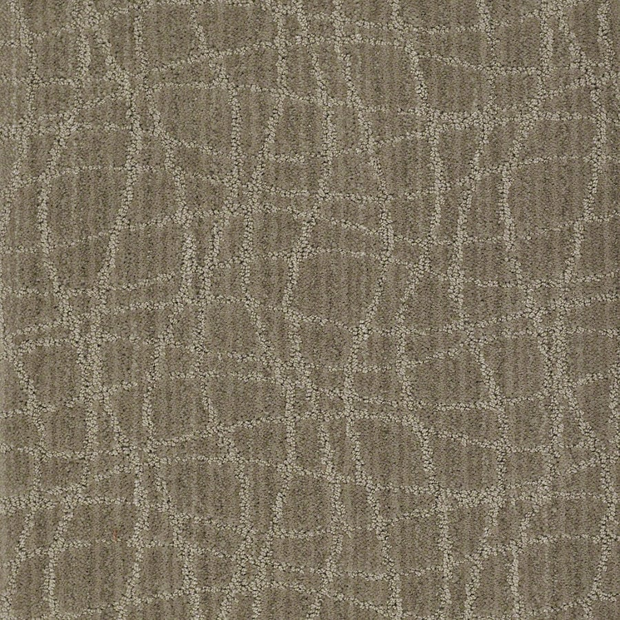 STAINMASTER Active Family Holly Springs Foggy Day Berber/Loop Interior Carpet