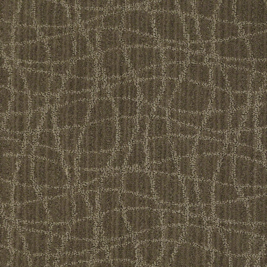 STAINMASTER Active Family Holly Springs Urbana Berber Indoor Carpet