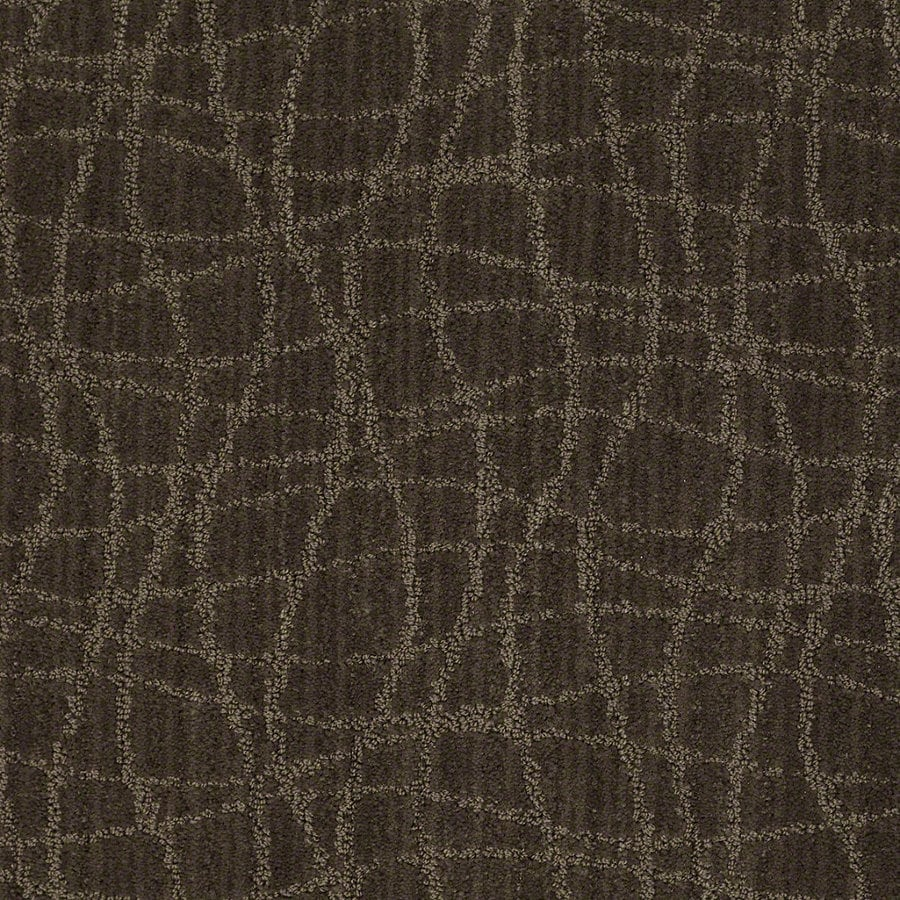 STAINMASTER Active Family Holly Springs Mineral Berber/Loop Interior Carpet