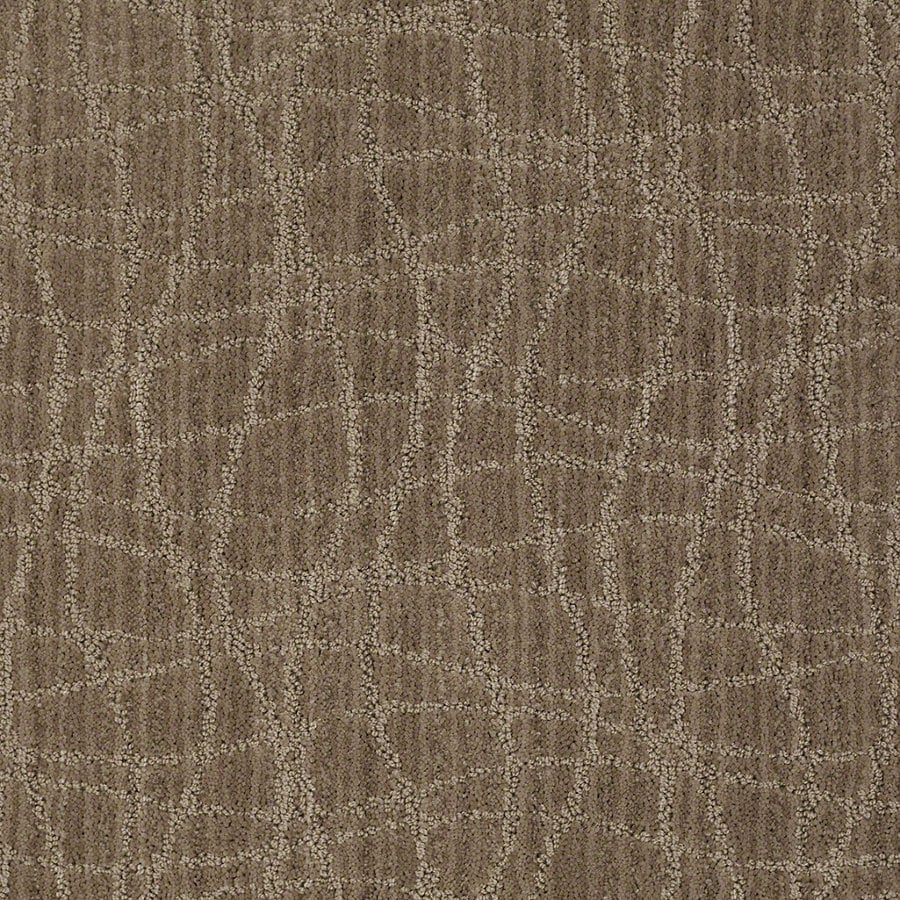 STAINMASTER Active Family Holly Springs Mocha Blast Berber/Loop Interior Carpet