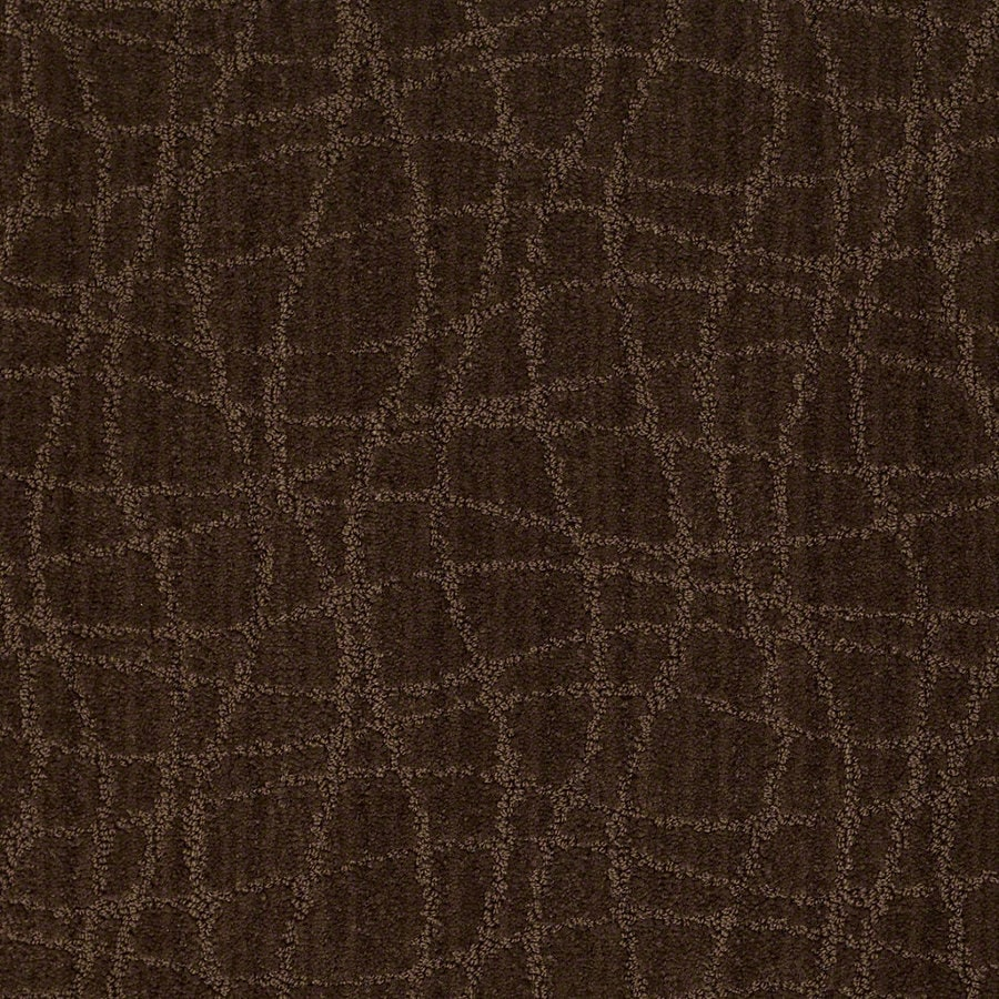 STAINMASTER Active Family Holly Springs 12-ft W Catskill Brown Berber/Loop Interior Carpet