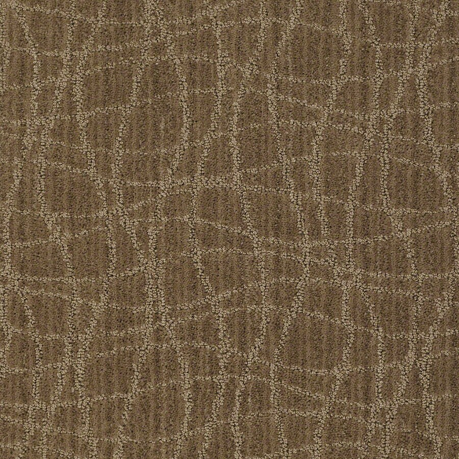 STAINMASTER Active Family Holly Springs Gingersnap Berber Indoor Carpet