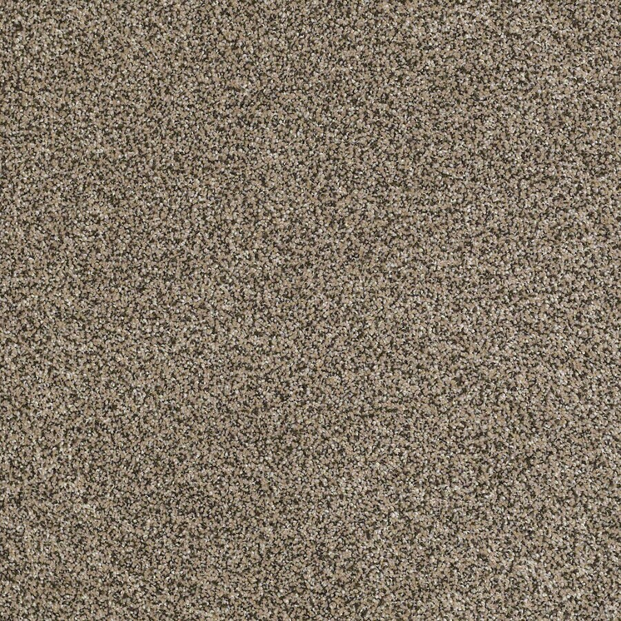 STAINMASTER Essentials Stone Mountain I 12-ft W Moonstone Textured Interior Carpet