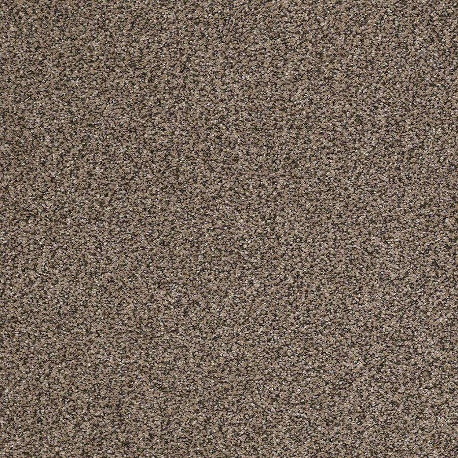 STAINMASTER Essentials Stone Mountain I Pebble Textured Indoor Carpet