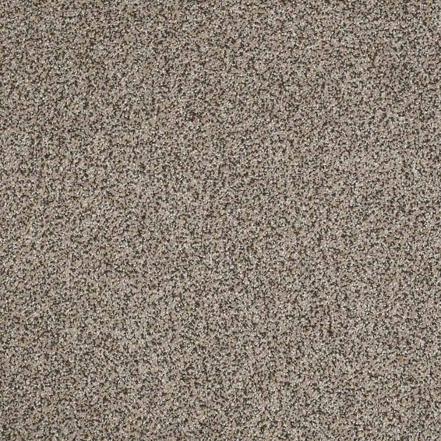 STAINMASTER Essentials Stone Mountain I 12-ft W Pumice Textured Interior Carpet