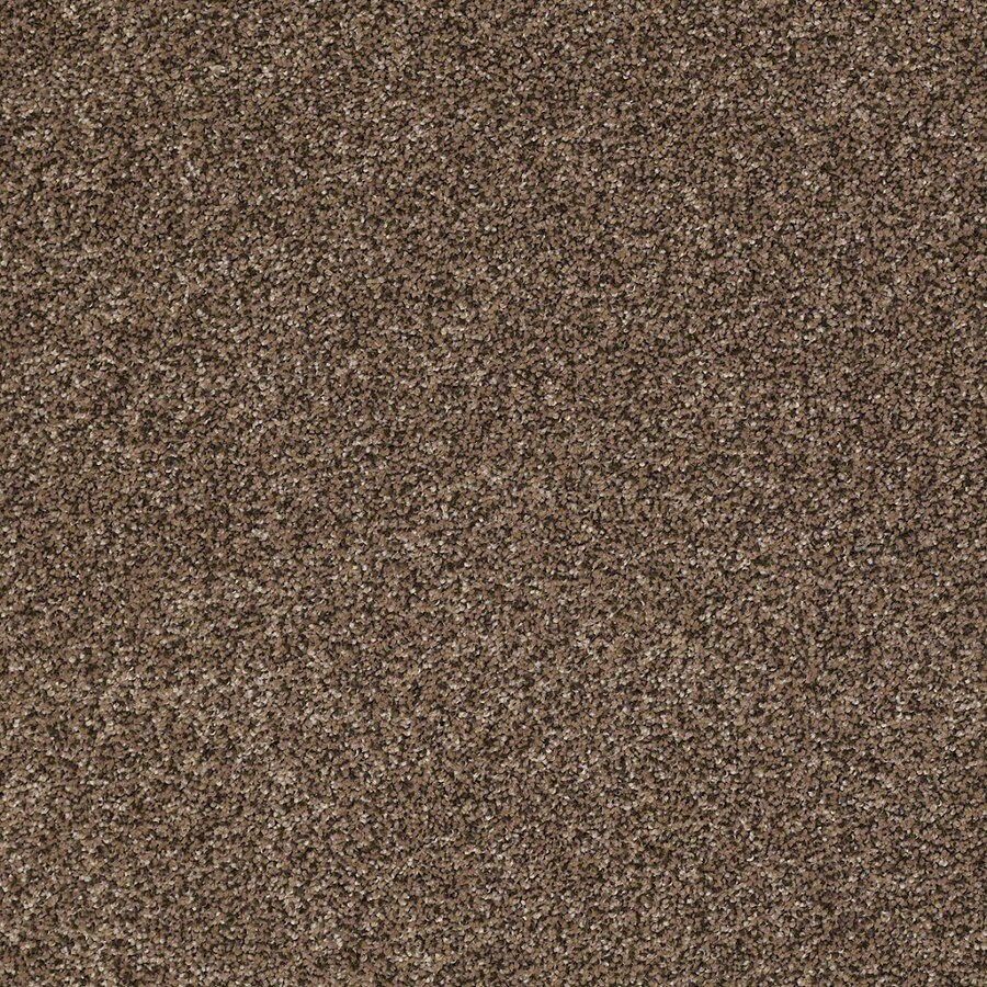 STAINMASTER Essentials Stone Mountain I Mother Lode Textured Indoor Carpet