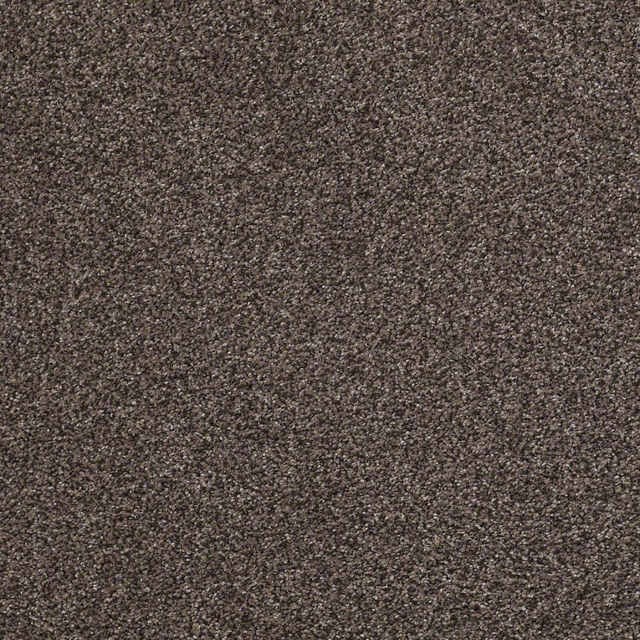STAINMASTER Essentials Stone Mountain I Earthy Emerald Textured Interior Carpet