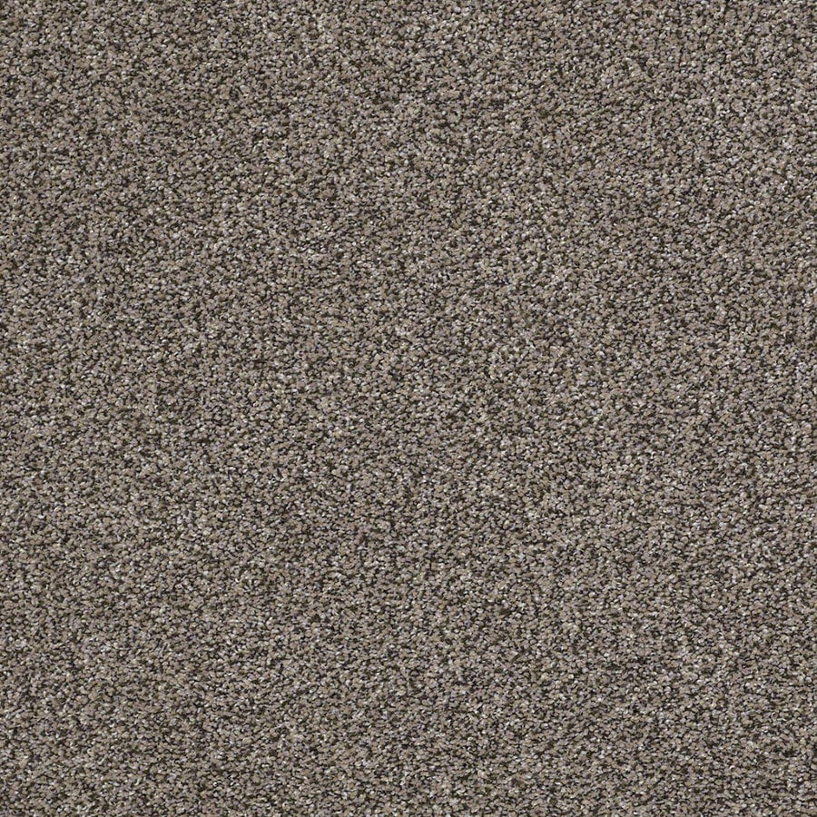 STAINMASTER Essentials Stone Mountain I Concrete Textured Interior Carpet