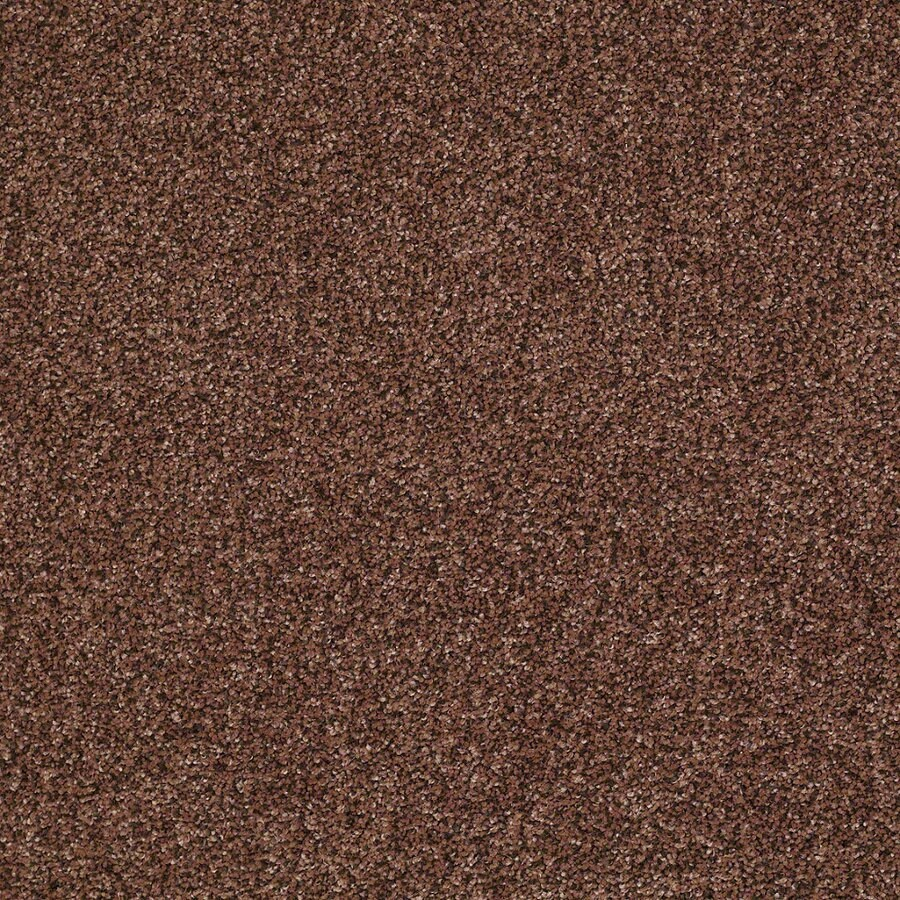 STAINMASTER Essentials Stone Mountain I 12-ft W Georgia Clay Textured Interior Carpet