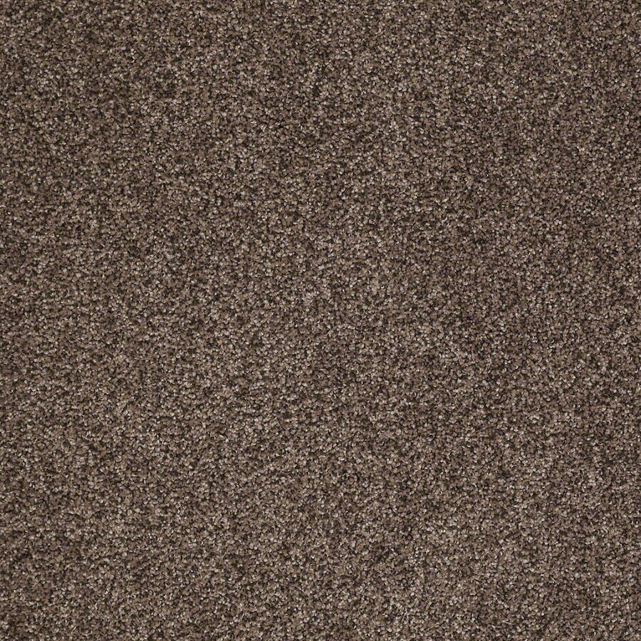 STAINMASTER Essentials Stone Mountain I 12-ft W Quarry Textured Interior Carpet