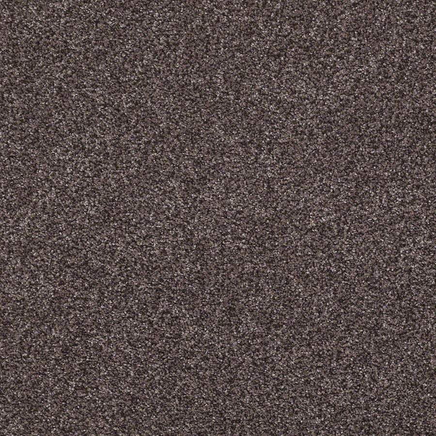 STAINMASTER Essentials Stone Mountain I 12-ft W Raw Amethyst Textured Interior Carpet