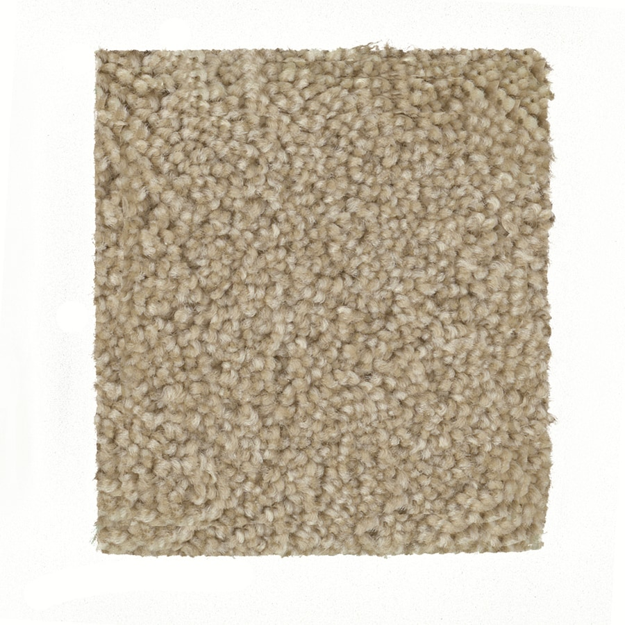 STAINMASTER PetProtect Greyhound - Feature Buy Yorkshire Textured Indoor Carpet