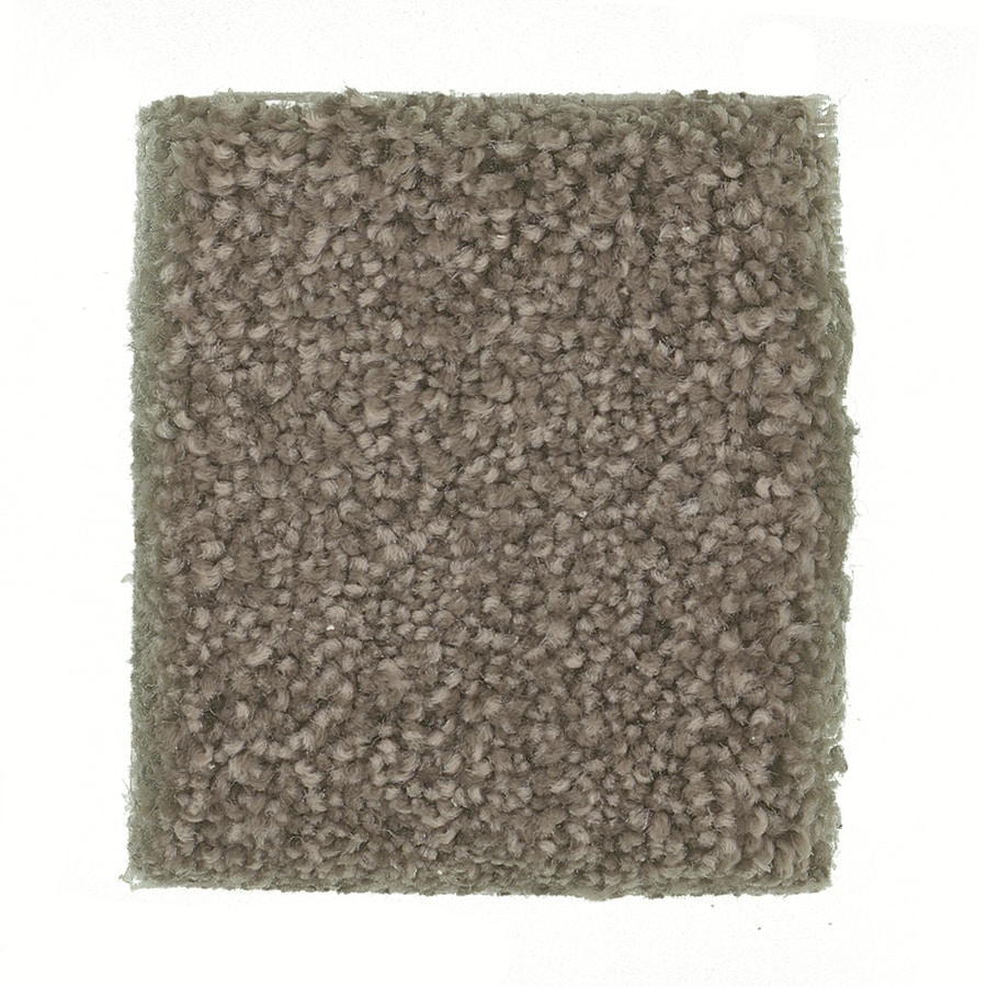 STAINMASTER PetProtect Greyhound - Feature Buy Shepard Textured Indoor Carpet