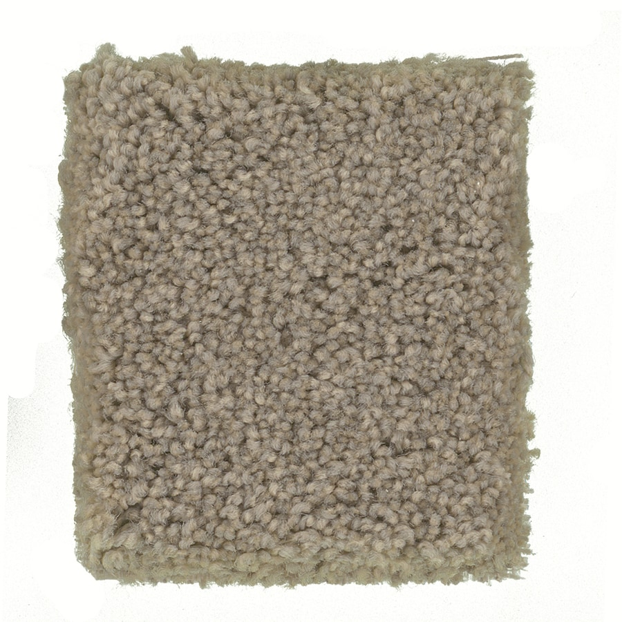 STAINMASTER PetProtect Great Dane- Feature Buy 12-ft W Siamese Textured Interior Carpet