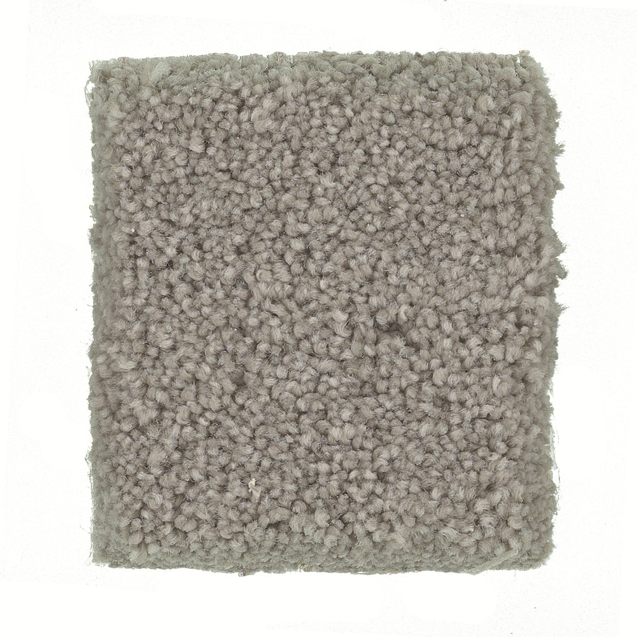 STAINMASTER PetProtect Great Dane - Feature Buy Siberian Textured Indoor Carpet