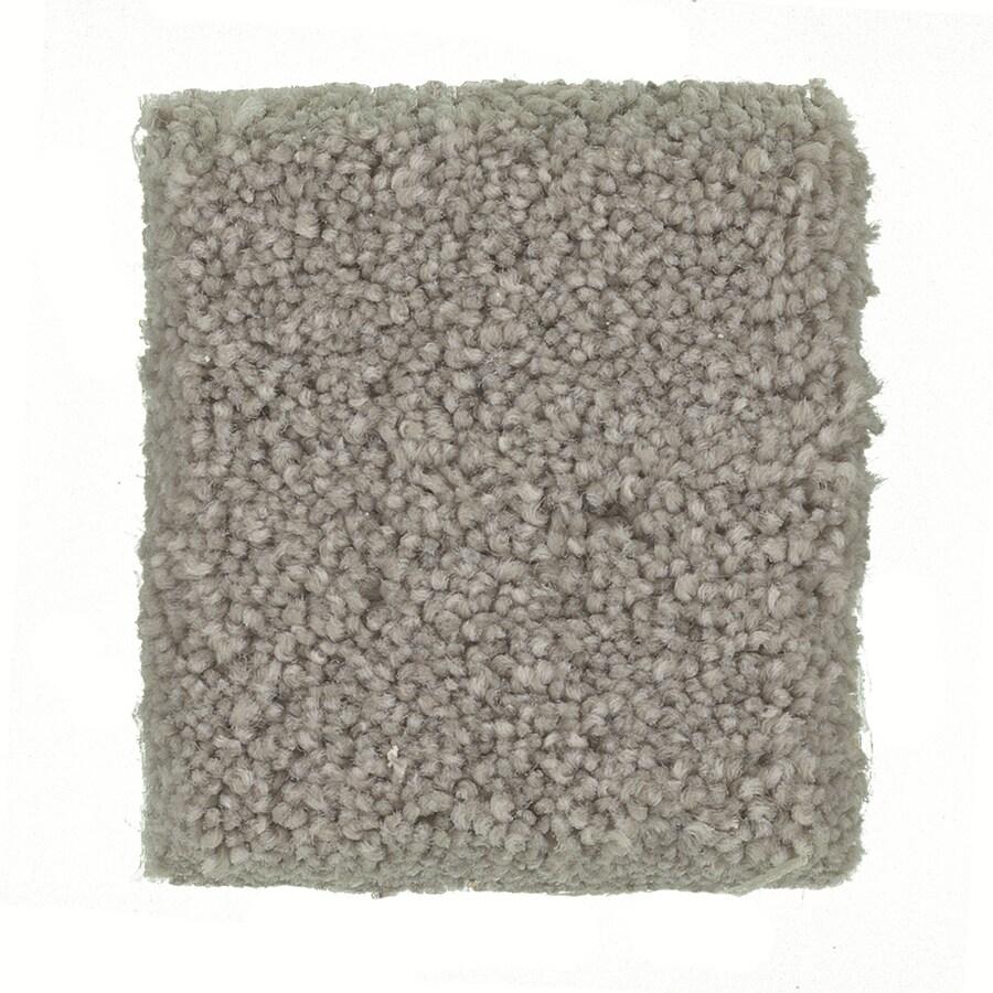 STAINMASTER PetProtect Great Dane Siberian Textured Interior Carpet