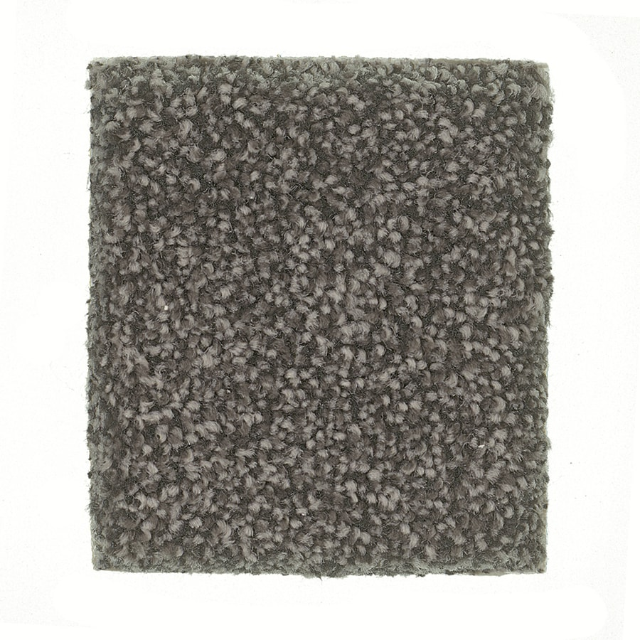 STAINMASTER PetProtect Great Dane - Feature Buy Afghan Textured Indoor Carpet