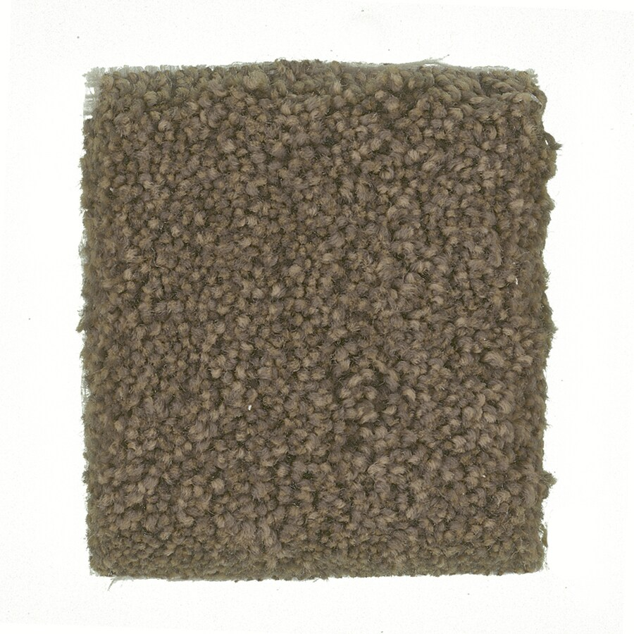 STAINMASTER PetProtect Great Dane Calico Textured Interior Carpet