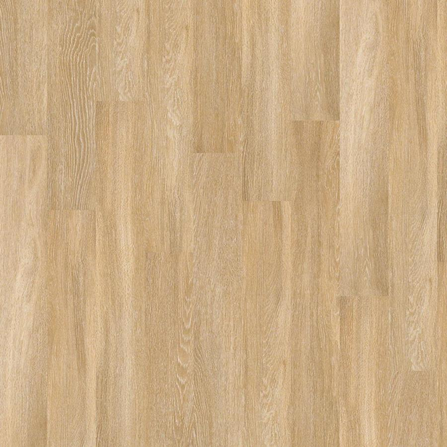 Shop Shaw Cosmopolitan 27 Piece 6 In X 48 In Manor