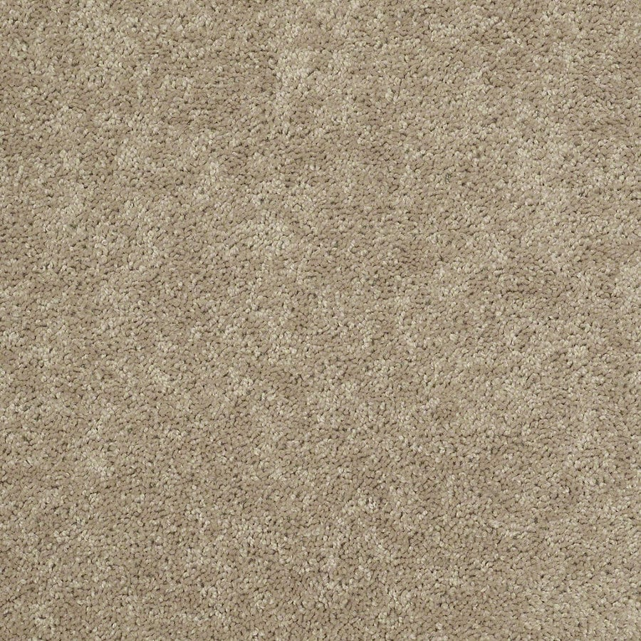 Shaw Stock Sand Textured Indoor Carpet