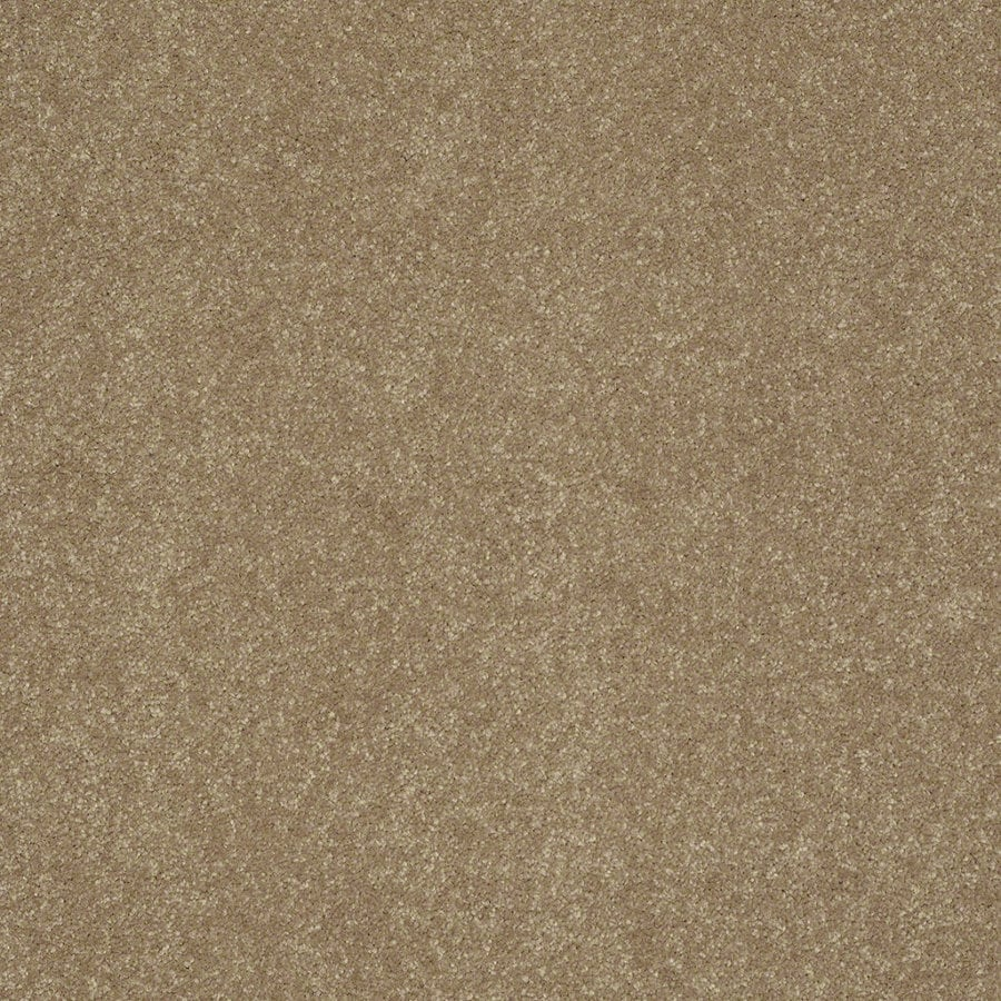 Shaw Stock 15-ft W Latte Textured Interior Carpet