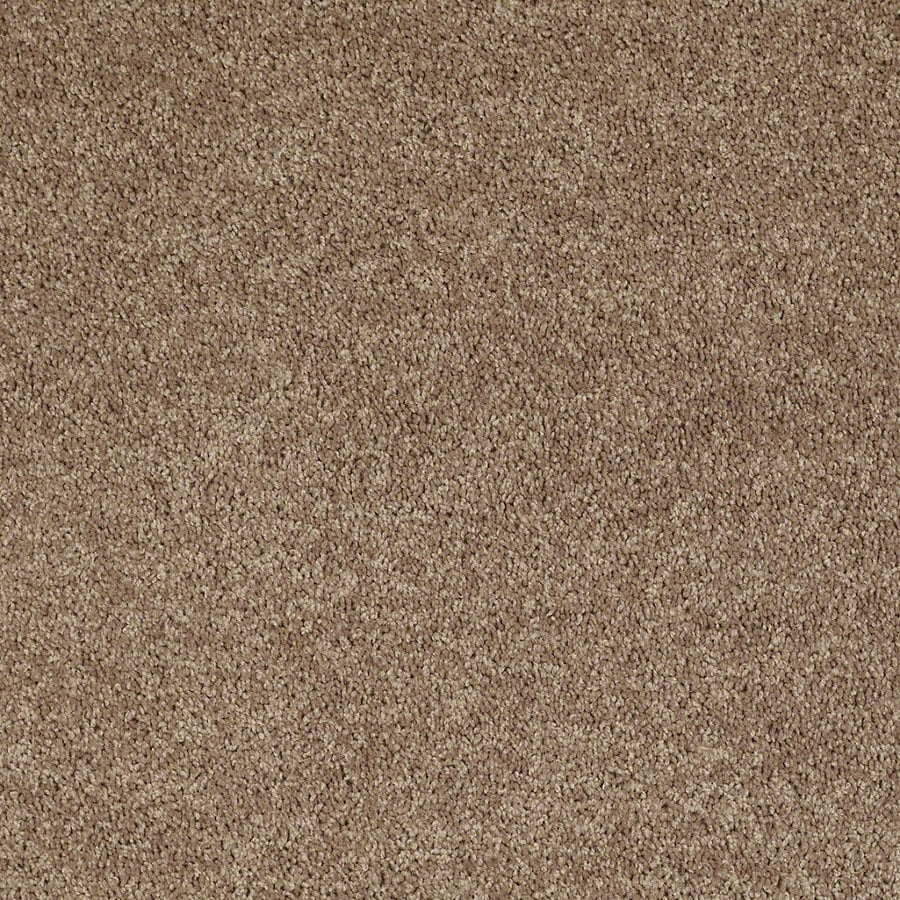 Shaw Stock Putty Textured Indoor Carpet