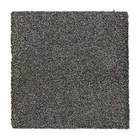 Stainmaster Essentials Stone Peak Ii 12 Ft Textured Interior Carpet