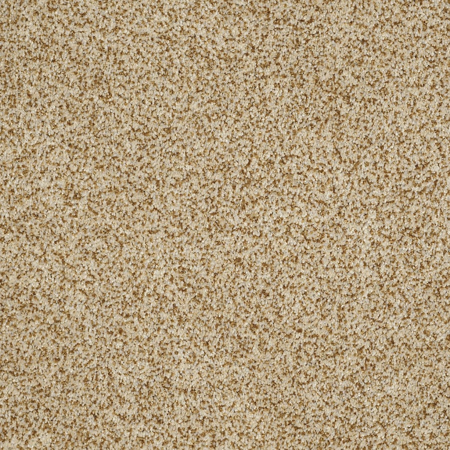 STAINMASTER Trusoft Private Oasis Iv Apollo Textured Indoor Carpet