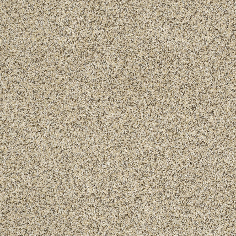 STAINMASTER Trusoft Private Oasis Iv Bordeaux Textured Interior Carpet