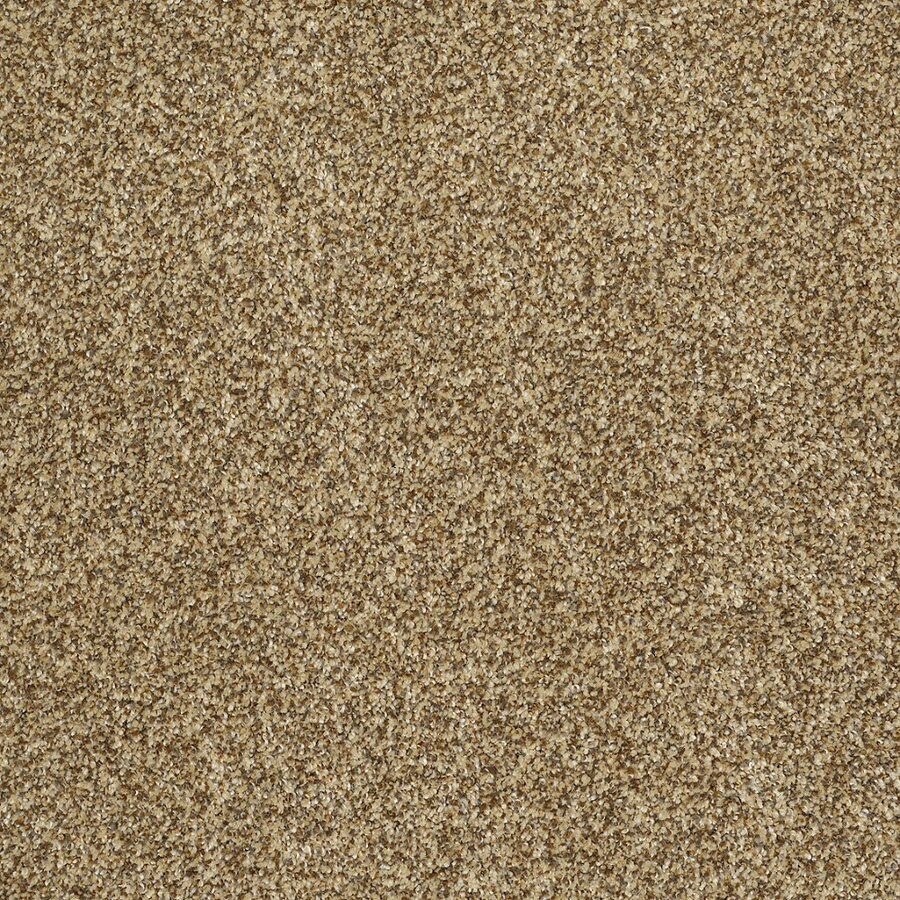 STAINMASTER TruSoft Private Oasis IV Tigereye Textured Interior Carpet