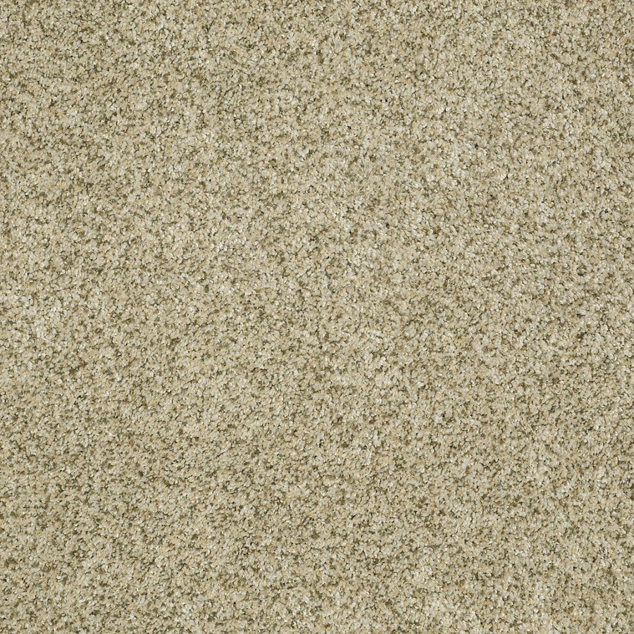 STAINMASTER Trusoft Private Oasis IV Sea Foam Textured Indoor Carpet