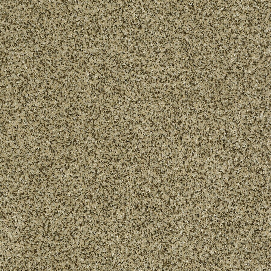 STAINMASTER Trusoft Private Oasis Iv Papillion Textured Indoor Carpet