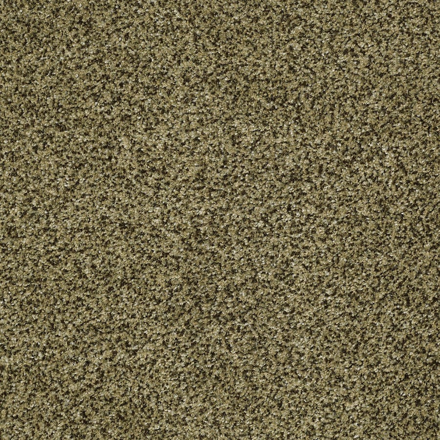 STAINMASTER TruSoft Private Oasis IV Verde Textured Interior Carpet