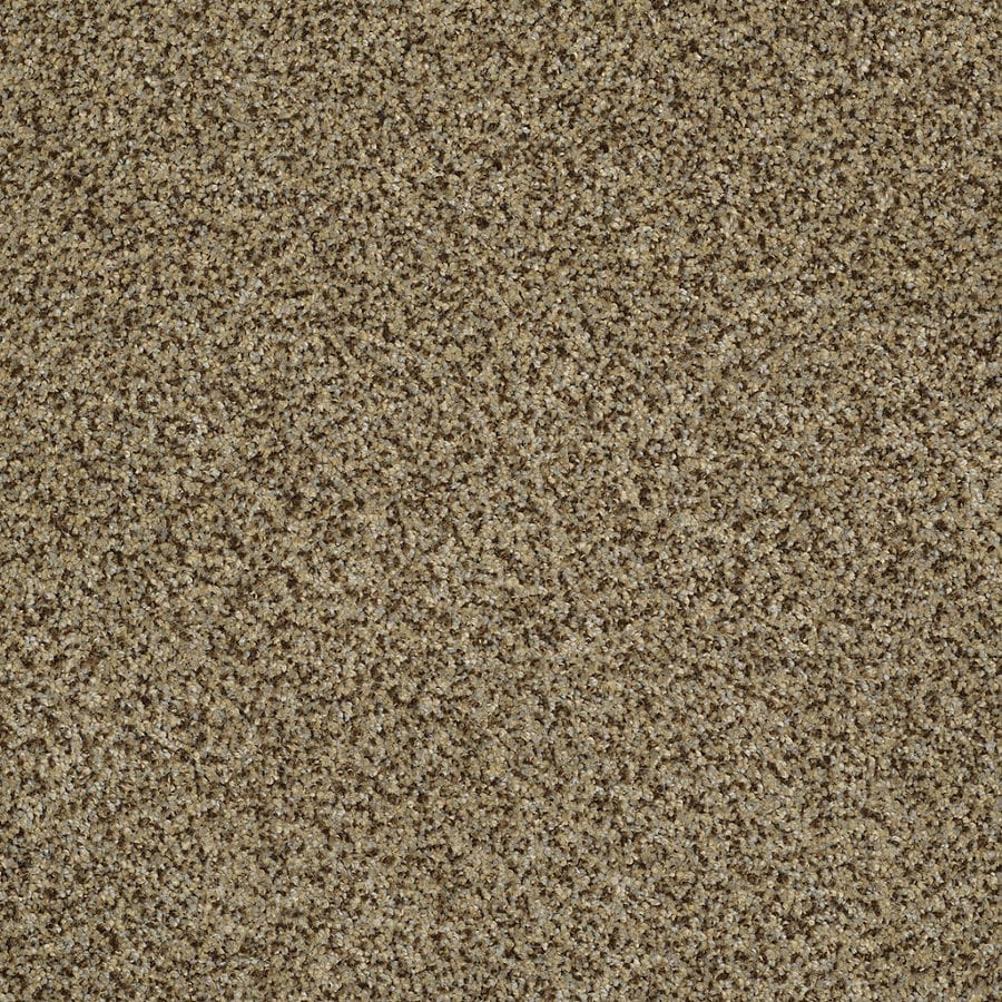 STAINMASTER Trusoft Private Oasis Iv Bahia Textured Indoor Carpet