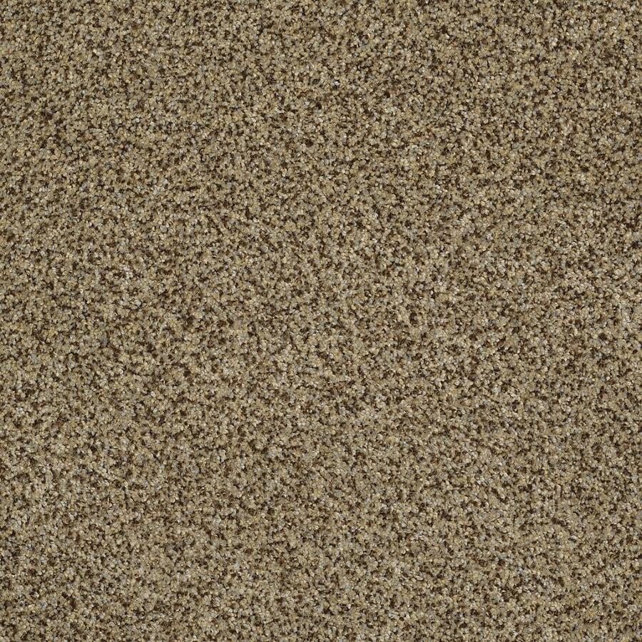 STAINMASTER Trusoft Private Oasis Iv Bahia Textured Interior Carpet