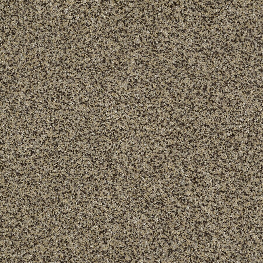 STAINMASTER TruSoft Private Oasis IV Fantasia Textured Interior Carpet