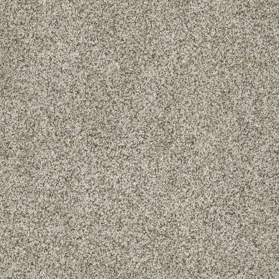 STAINMASTER TruSoft Private Oasis IV 12-ft W Key West Textured Interior Carpet