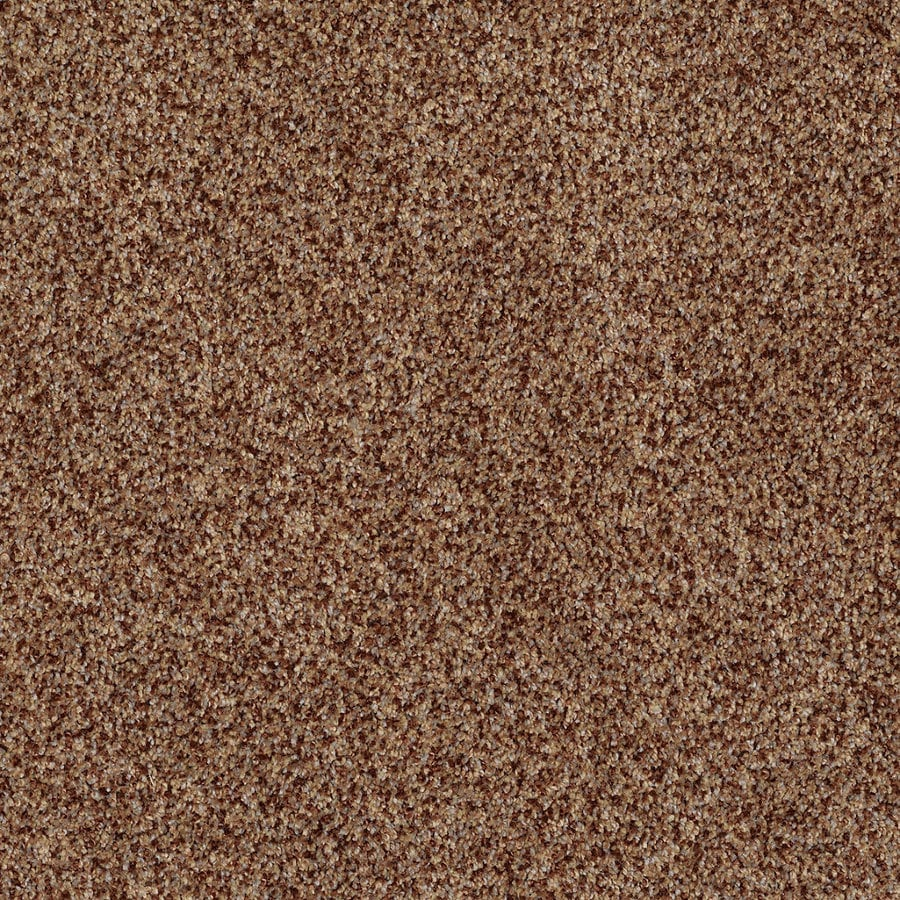 STAINMASTER TruSoft Private Oasis IV 12-ft W x Cut-to-Length Montana Textured Interior Carpet