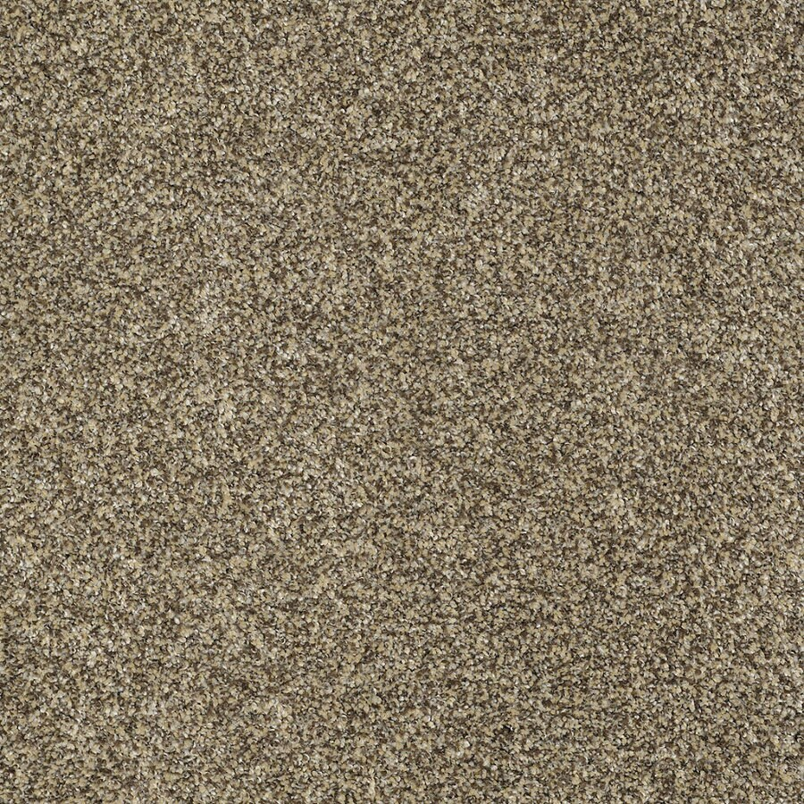 STAINMASTER Trusoft Private Oasis IV Taupe Textured Indoor Carpet