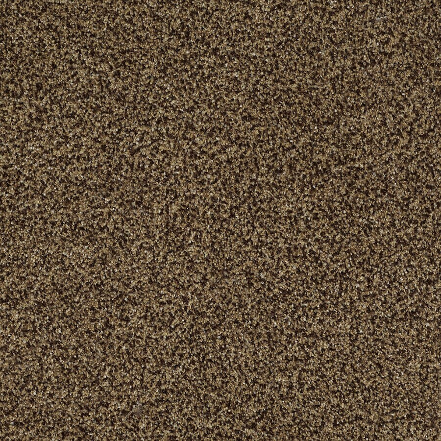 STAINMASTER Trusoft Private Oasis IV Supreme Textured Indoor Carpet