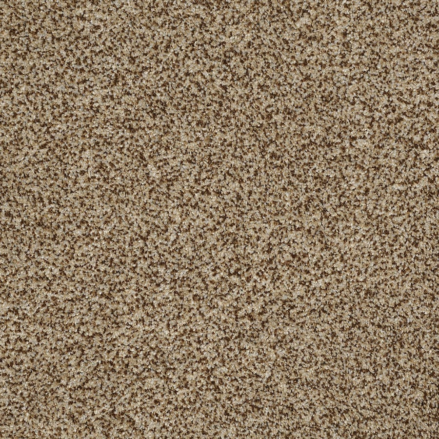 STAINMASTER Trusoft Private Oasis IV Niagara Textured Indoor Carpet