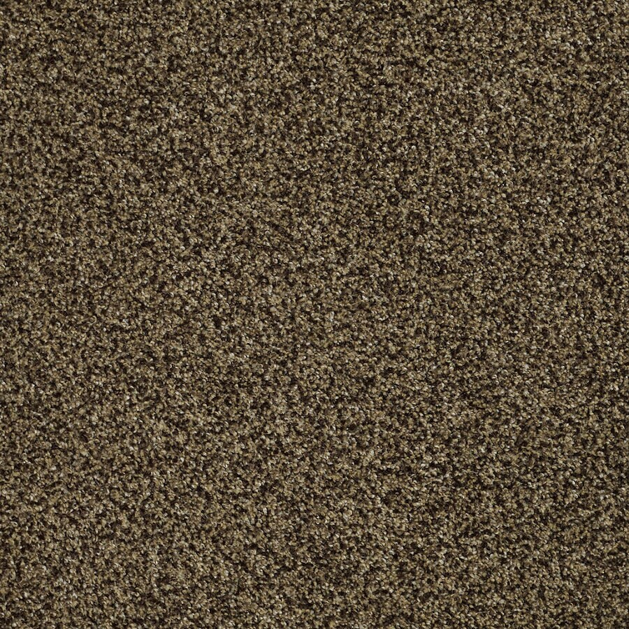 STAINMASTER Trusoft Private Oasis Iv Appia Textured Interior Carpet