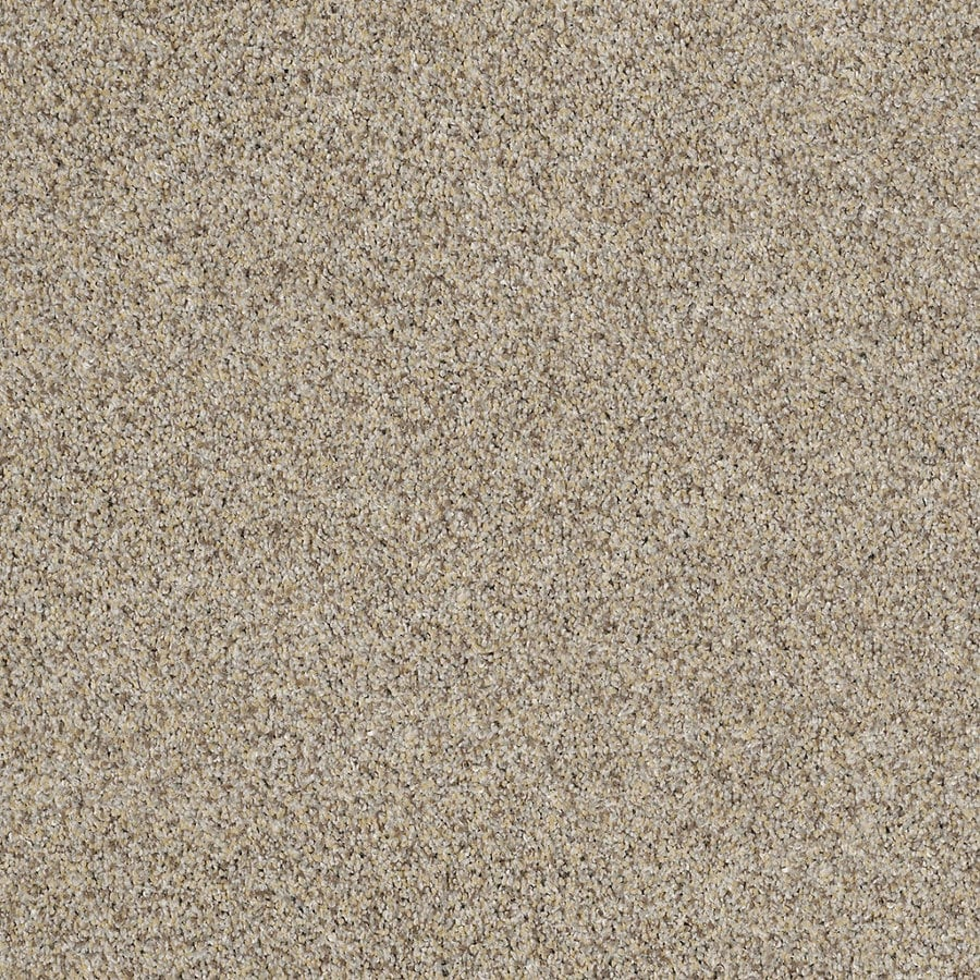 STAINMASTER TruSoft Private Oasis IV 12-ft W Antico Textured Interior Carpet