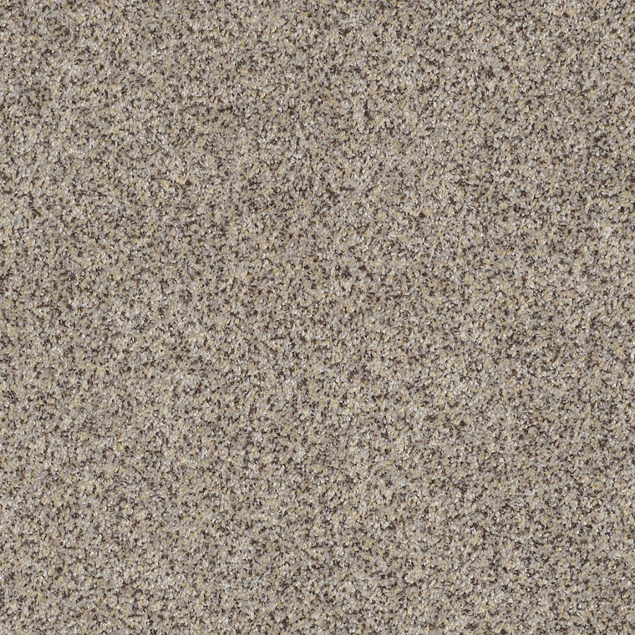 STAINMASTER TruSoft Private Oasis IV Aztec Wave Textured Interior Carpet