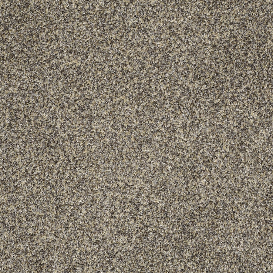 STAINMASTER TruSoft Private Oasis IV 12-ft W x Cut-to-Length Dakota Textured Interior Carpet