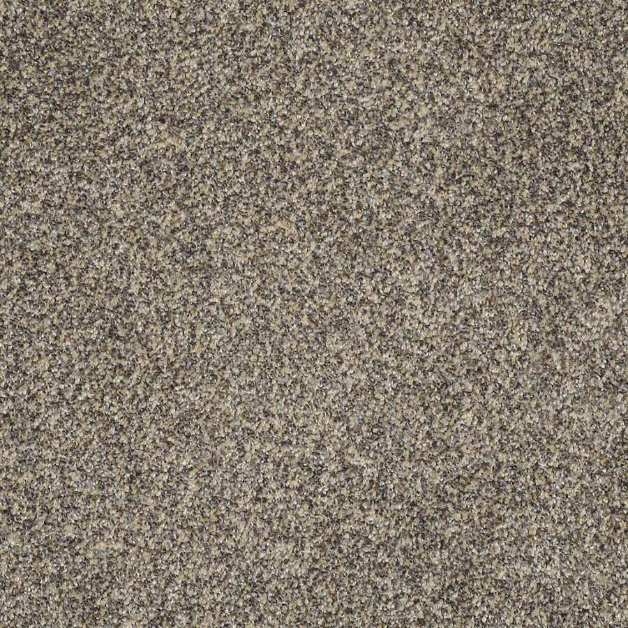STAINMASTER Trusoft Private Oasis IV Dakota Textured Indoor Carpet