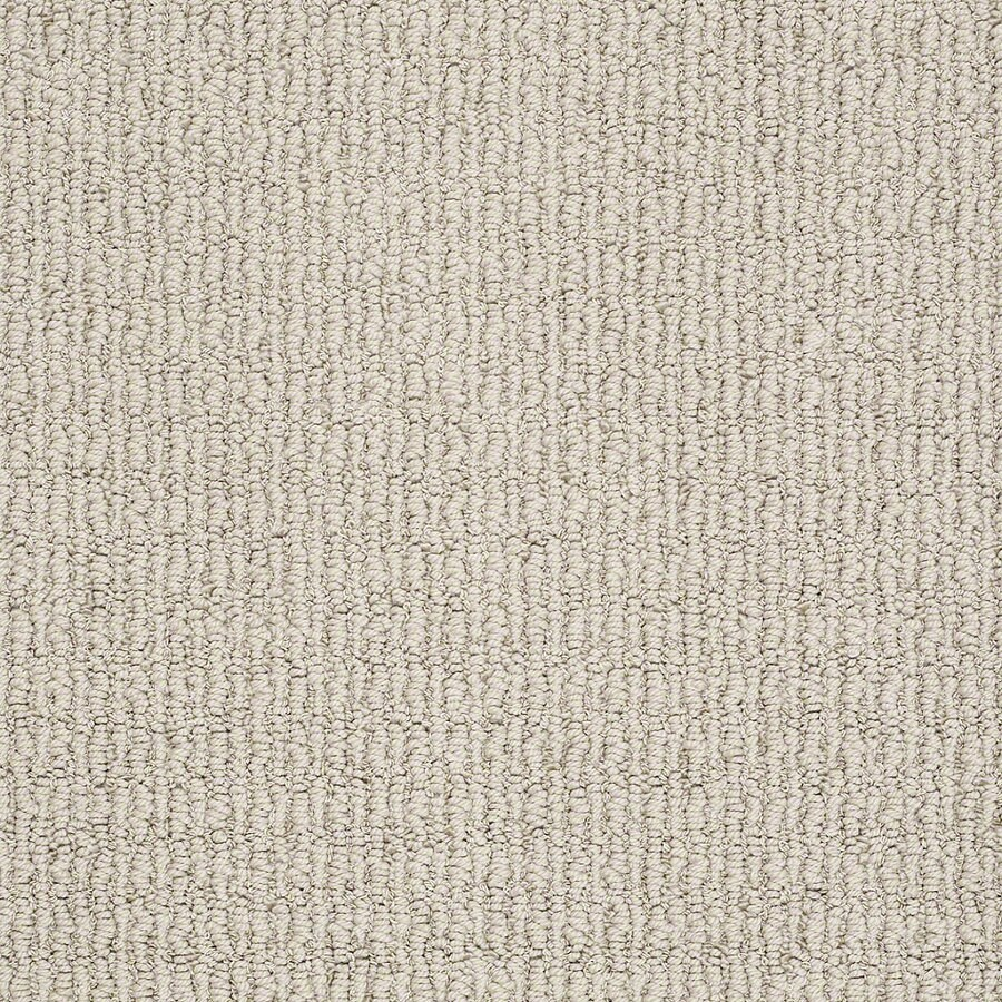 STAINMASTER TruSoft Uneqivocal 12-ft W x Cut-to-Length Marble Berber/Loop Interior Carpet