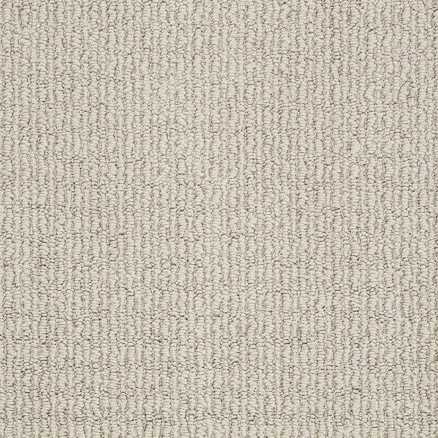STAINMASTER TruSoft Uneqivocal Marble Berber Indoor Carpet