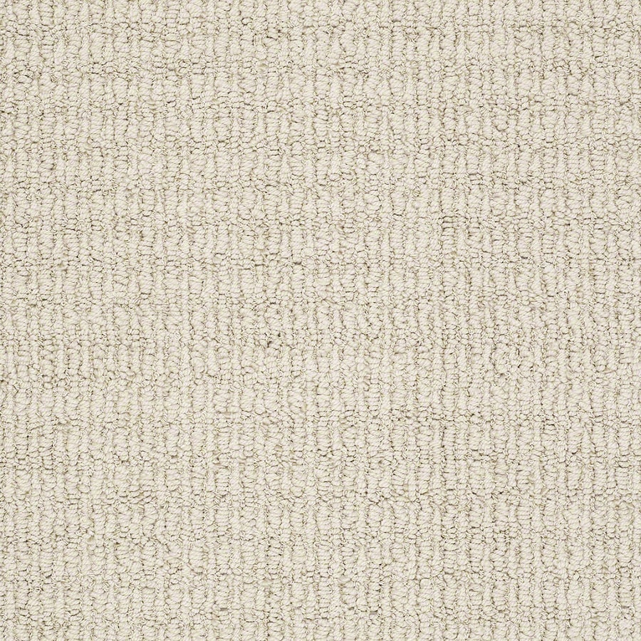 STAINMASTER TruSoft Uneqivocal Moonlit Cream Berber/Loop Interior Carpet