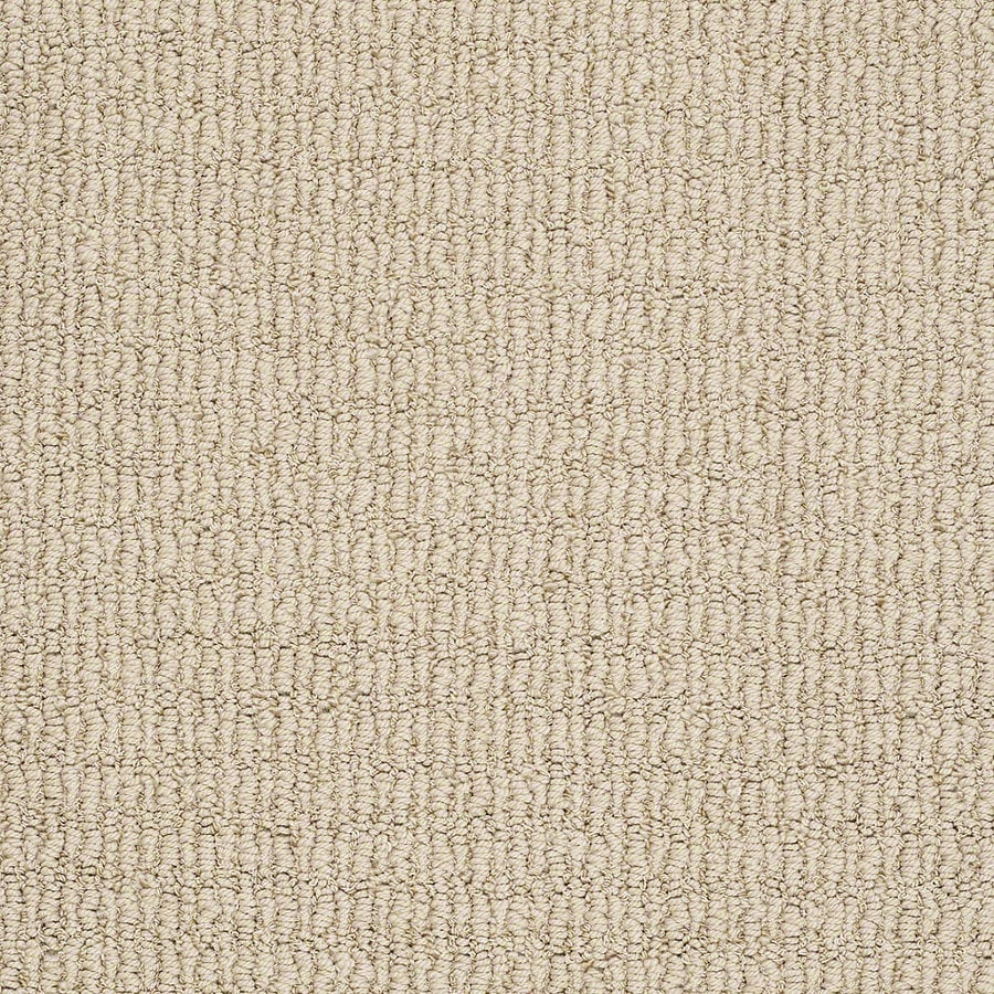 STAINMASTER TruSoft Uneqivocal Sand Shell Berber Indoor Carpet